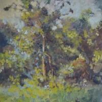 Masood Omer - Trees 2