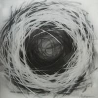 Agnieszka Foltyn - Nest II
