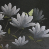 Greg Nordoff - Magnolias with Butterfly