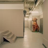 Maureen O'Connor - Portrait of a Dog