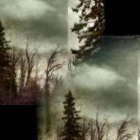 Rick Filler - Guiding Light I 2/15