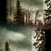 Rick Filler - Guiding Light II 2/15