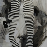 Agnieszka Foltyn - Stockings Mylar