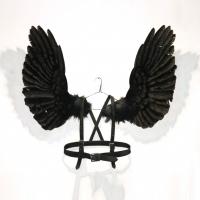 Dorion Scott - Wings