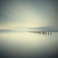 David Ellingsen - Salish Sea, Study 2 #66