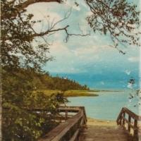 Patrick Lajoie - Beach Path