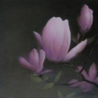 Greg Nordoff - Magnolia 1