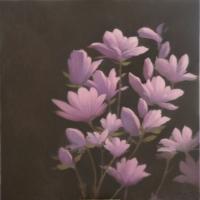 Greg Nordoff - Magnolias 2