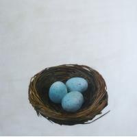 Erin Vincent - Nest