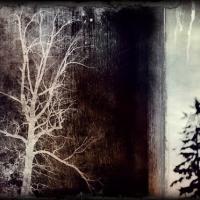 Rick Filler - Roots