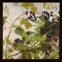 Patricia Murphy-Macdonald - Picnic Series Blackberries #163