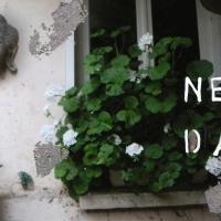 Talia Shipman - A New Day