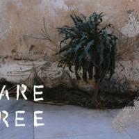 Talia Shipman - Care Free