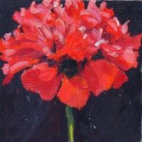 Hilda Oomen - Red Poppy #2