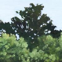 Hilda Oomen - Tree Tops