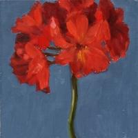Hilda Oomen - Red Geranium #1