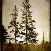 Rick Filler - Trail To Traverse