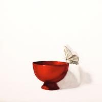 Dorion Scott - redder than a rose