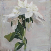 Hilda Oomen - A Beginning