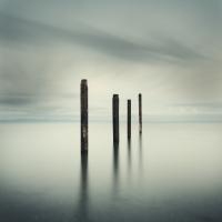 David Ellingsen - Salish Sea, Study 2 #48 1/10