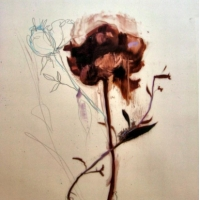 Madeleine Lamont - Flowers on Mylar 3J