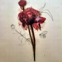 Madeleine Lamont - Flowers on Mylar  3A
