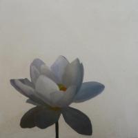 Erin Vincent - Water Flowers
