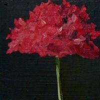 Hilda Oomen - Poppy II