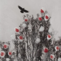 Arleigh Wood - A Crow Circles Searching for Motion