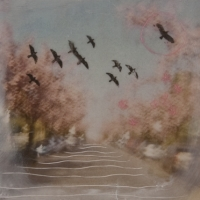 Arleigh Wood - Bird's Drift on Cherry Blossom Clouds 2