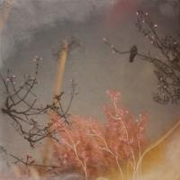 Arleigh Wood - Talk to Me