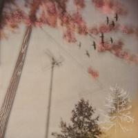 Arleigh Wood - A Spring Mist Lifts