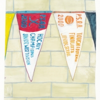 Tara Cooper - Shirts vs Skins - Pennants I