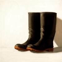 Dorion Scott - Boot 2