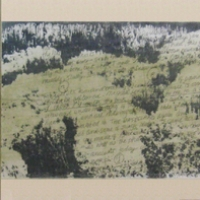 Eleanor Doran - Le Jardinier (triptych)
