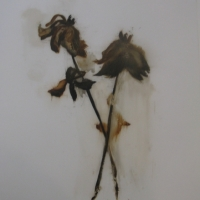 Madeleine Lamont - Mylar Flower Series Brown 2