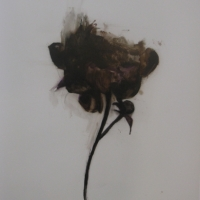 Madeleine Lamont - Mylar Flower Series Brown 4