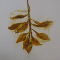 Madeleine Lamont - Mylar Flower Series Yellow 1