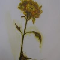Madeleine Lamont - Mylar Flower Series Yellow 2