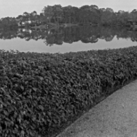 Paul Till - Morikama Gardens - 1/5