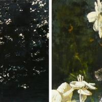 Hilda Oomen - Blossom
