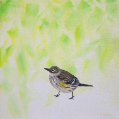 Emily Bickell - Yellow-Rumped Warbler