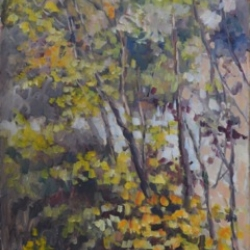 Masood Omer - Tree 5