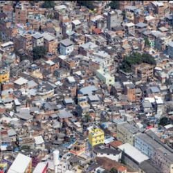 Peter Andrew - Rocinha