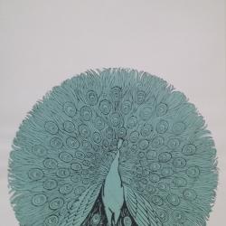 Alice Jarry - Peacock