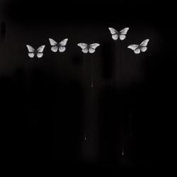 Dorion Scott - Untitled (5 butterflies)