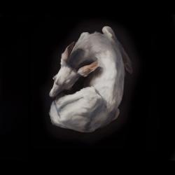Dorion Scott - Untitled (fawn)