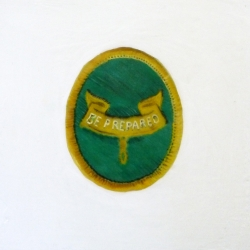 Erin Vincent - Boy Scout Badge