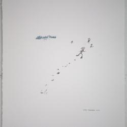 Todd  Stewart  - Running