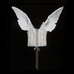Dorion Scott - Untitled (Wing with Corset)